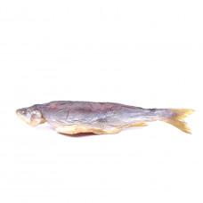 Рыба Голец холодного копчения