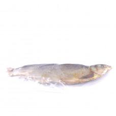 Рыба Сырок вяленый