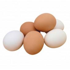 Яйцо 1С 10шт