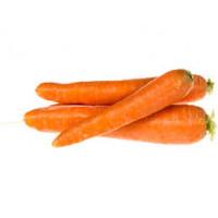 Морковь Северный